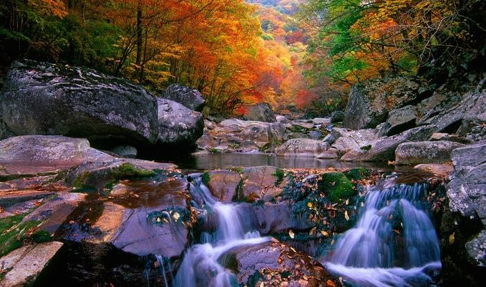 Vẻ đẹp thiên nhiên ở Jirisan